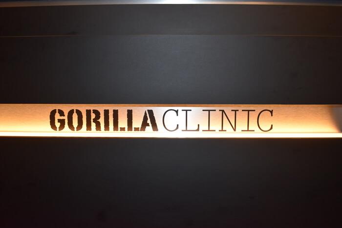 gorilla clinic
