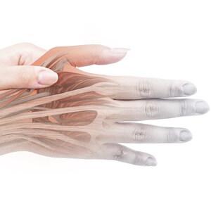 指の筋肉パワーボール