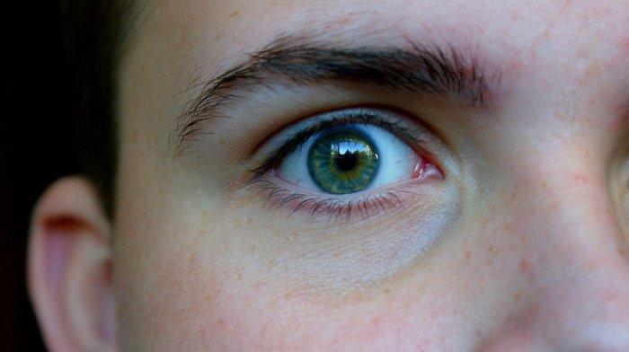 ルックスの特徴3.眉毛を整えている