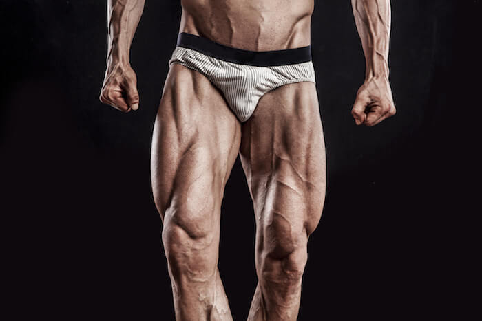 シシースクワットで効果のある筋肉