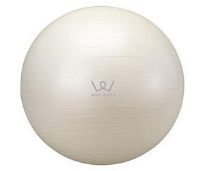 ALINCO(アルインコ) バランスボール