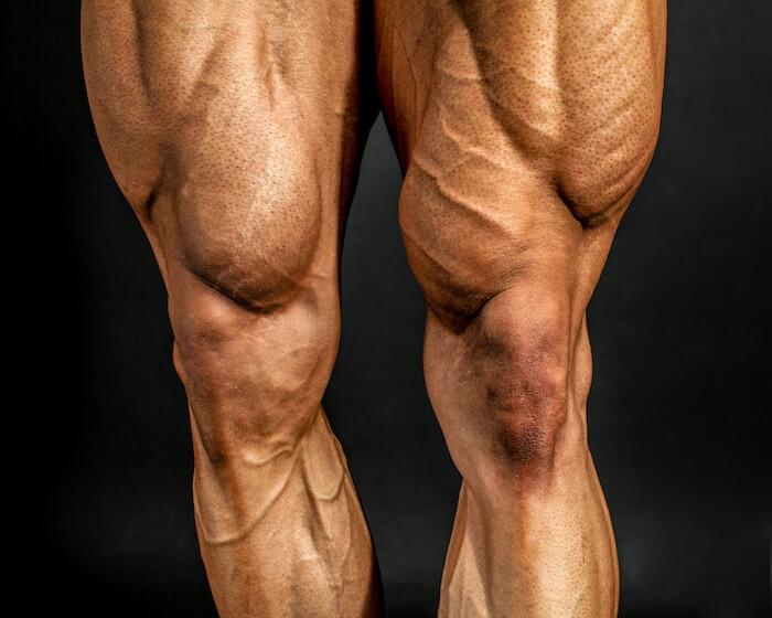 ハックスクワットで鍛えられる筋肉