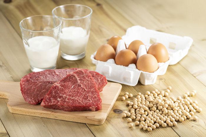 1.タンパク質含有量で選ぶ