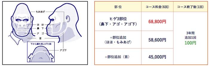 ゴリラクリニックのヒゲ脱毛の料金詳細(見積書付き)