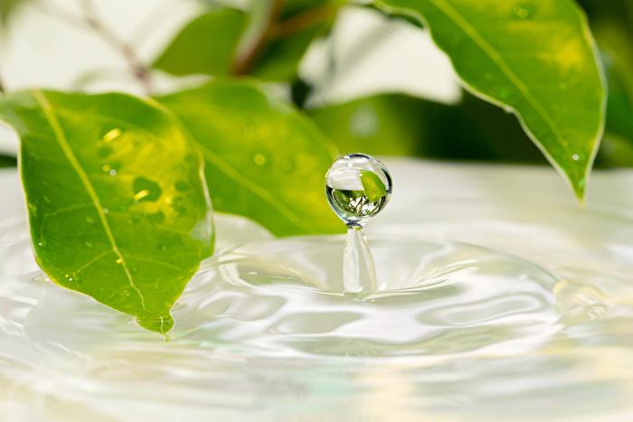 ①有効成分が入った薬用化粧水を選ぶ